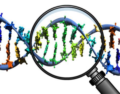 Genetic Engineering Essay - 2349 Words - AvroArrow